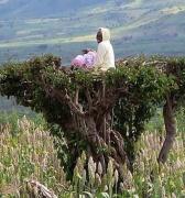 Arba Minch, puerta de entrada al mundo tribal etíope