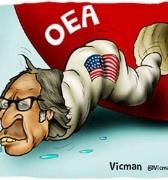 OEA nunca más
