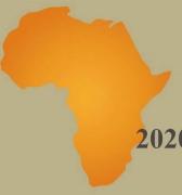 Entre desafíos políticos África franqueó el 2020